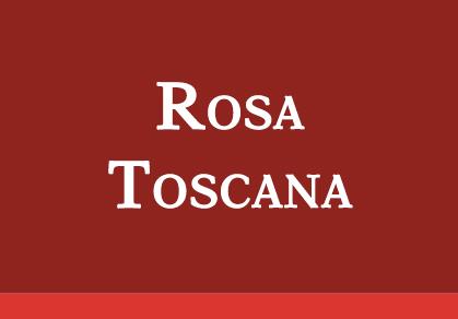 Rosa Toscana